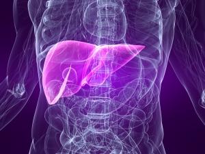 Hepatitis A Test