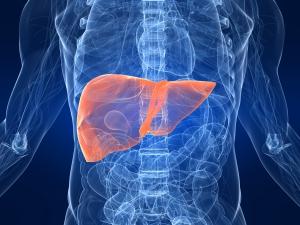 Hepatitis C Test